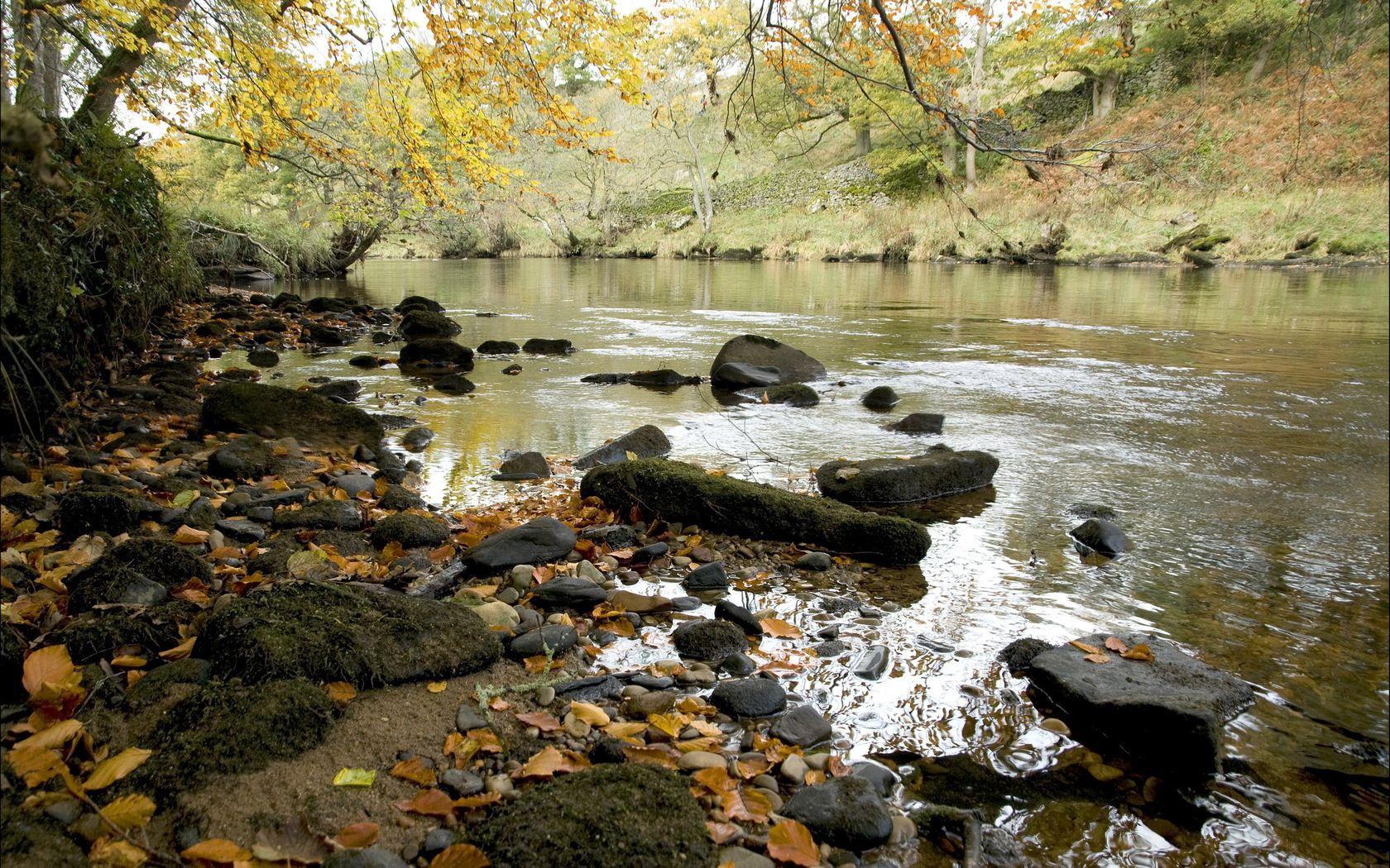 105740 скачать обои Природа, Река, Камни, Осень, Листья, Берег, Течение - заставки и картинки бесплатно