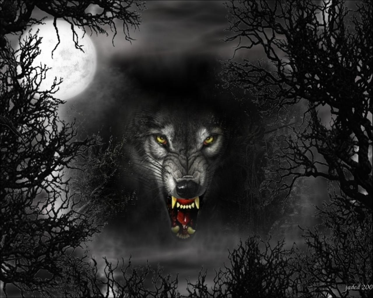 11915 download wallpaper Animals, Wolfs, Art screensavers and pictures for free