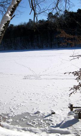 25348 скачать обои Пейзаж, Зима, Река, Деревья, Снег - заставки и картинки бесплатно
