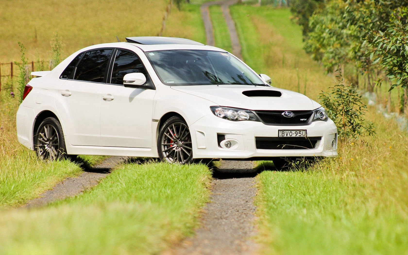 77669 Screensavers and Wallpapers Subaru for phone. Download Trees, Grass, Subaru, Cars, Path, Trail, Impreza pictures for free