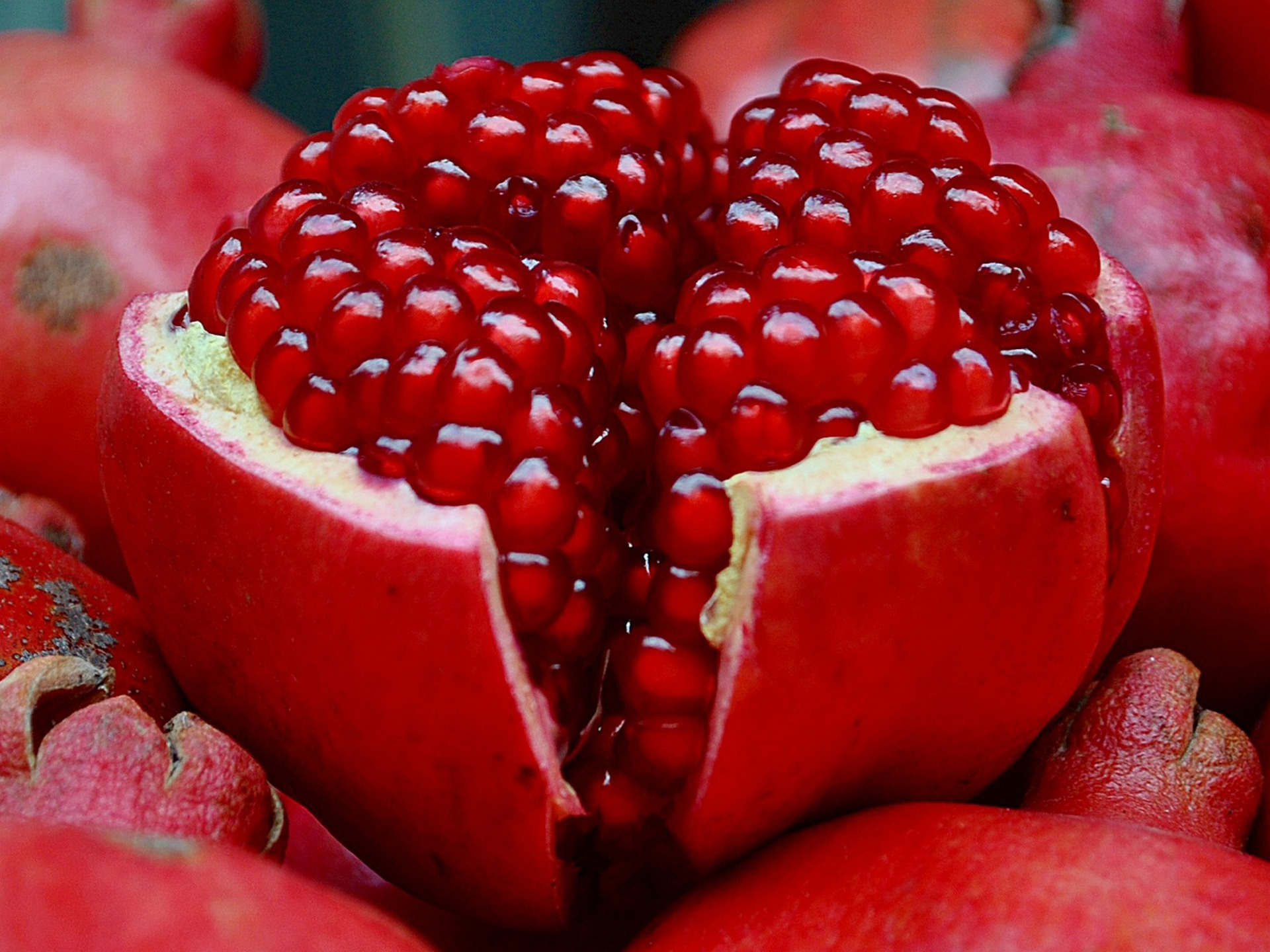 57092 download wallpaper Food, Fruit, Slice, Section, Garnet, Pomegranate screensavers and pictures for free