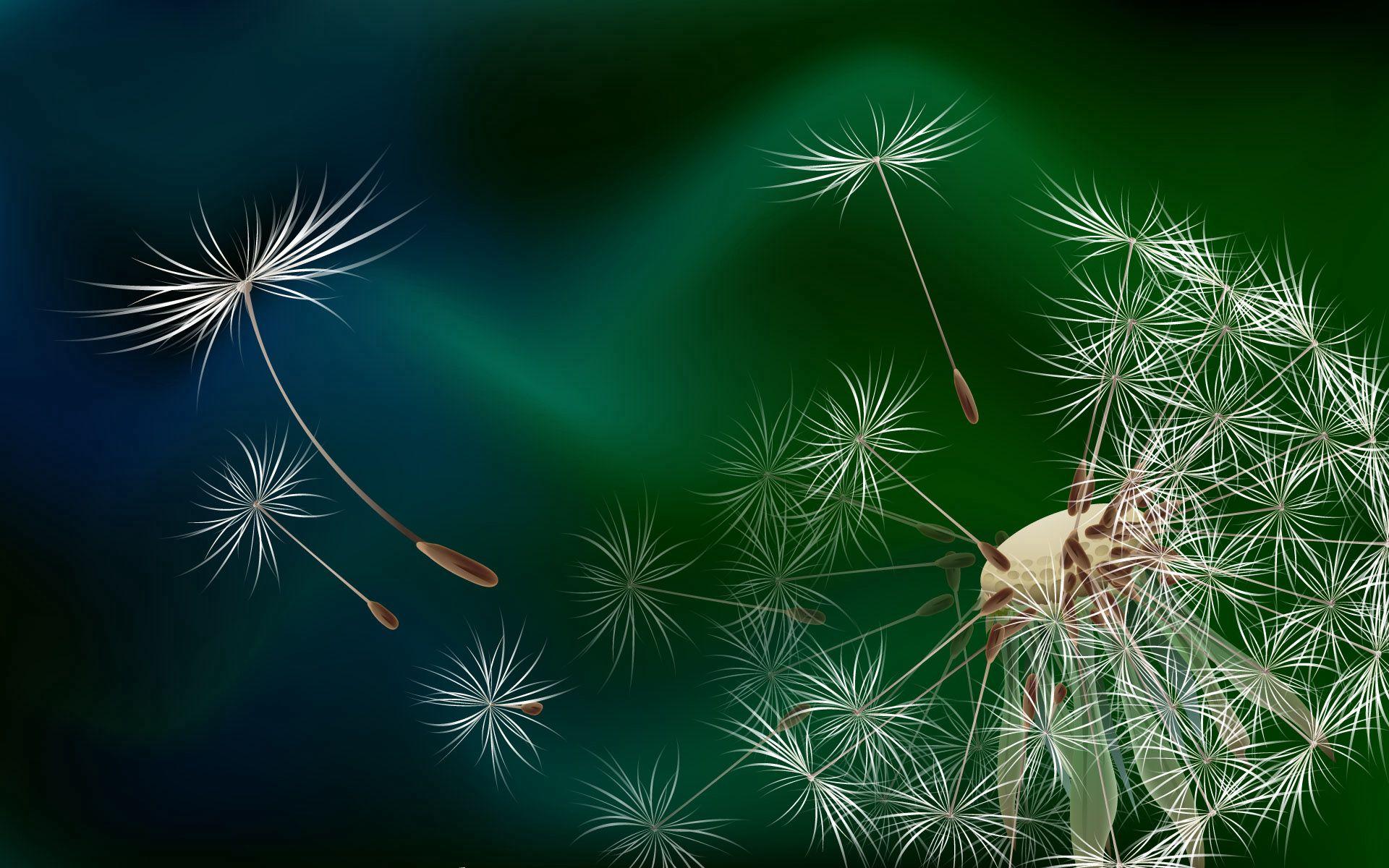 121425 скачать обои Абстракция, Одуванчик, Цветок, Полет, Пух - заставки и картинки бесплатно