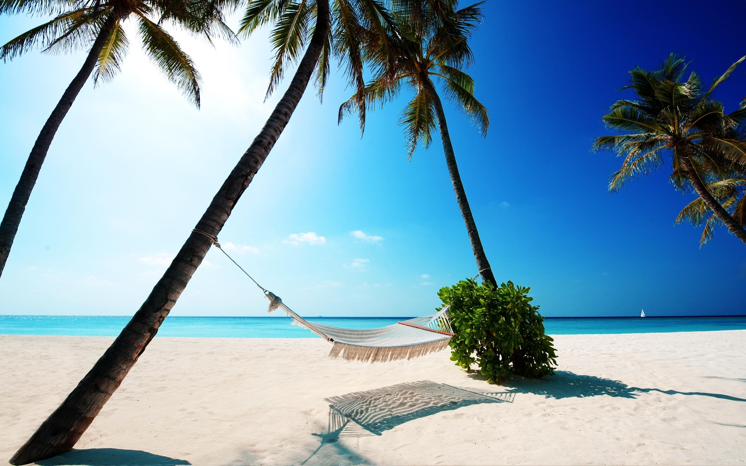 17479 скачать обои Пейзаж, Море, Пляж, Пальмы - заставки и картинки бесплатно