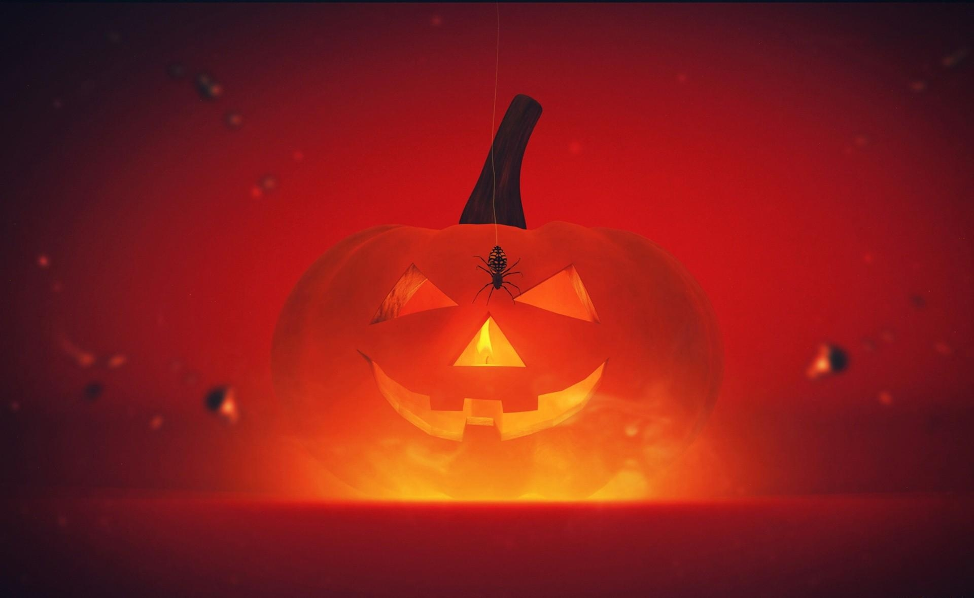 66807 download wallpaper Holidays, Halloween, Holiday, Pumpkin, Spider, Shine, Light screensavers and pictures for free