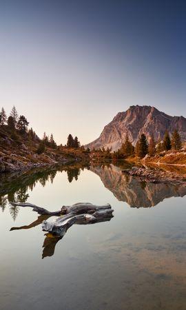 156494 скачать обои Природа, Озеро, Коряга, Деревья, Горы, Пейзаж - заставки и картинки бесплатно