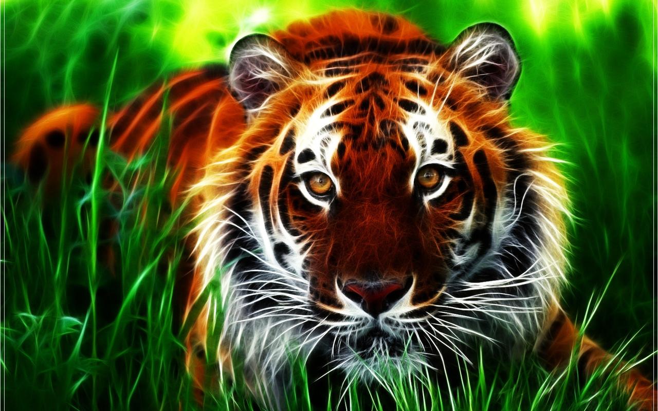 35747 Hintergrundbild herunterladen Tiere, Fotokunst, Tigers - Bildschirmschoner und Bilder kostenlos