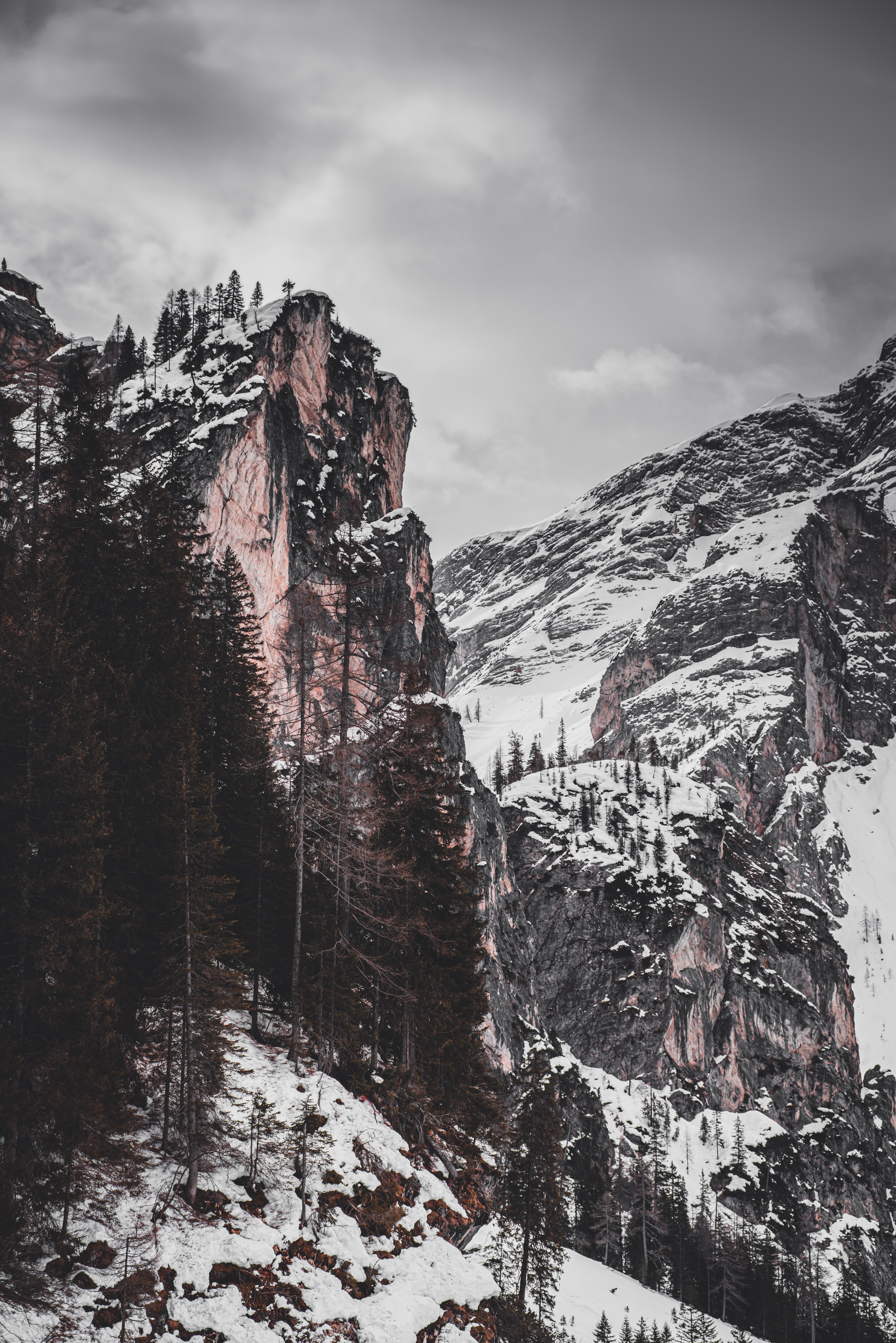 141799 download wallpaper Nature, Rocks, Snow, Trees, Relief screensavers and pictures for free