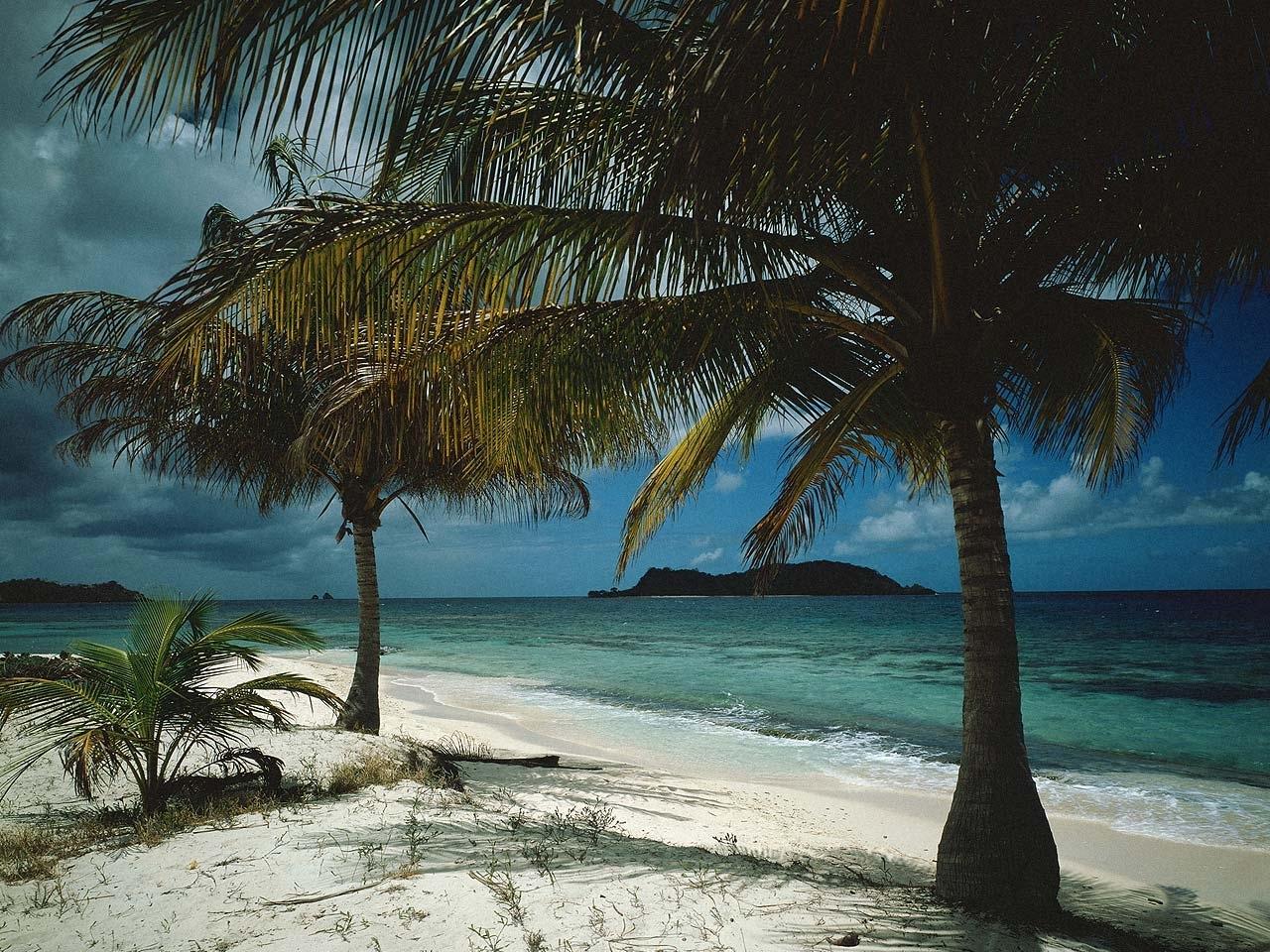 26462 免費下載壁紙 景观, 海, 云, 海滩, 棕榈 屏保和圖片