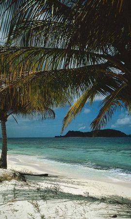 26462 скачать обои Пейзаж, Море, Облака, Пляж, Пальмы - заставки и картинки бесплатно