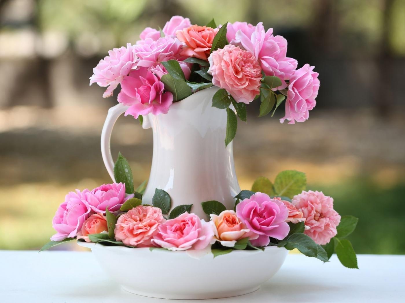 Téléchargez des papiers peints mobile Roses, Bouquets, Plantes, Fleurs gratuitement.