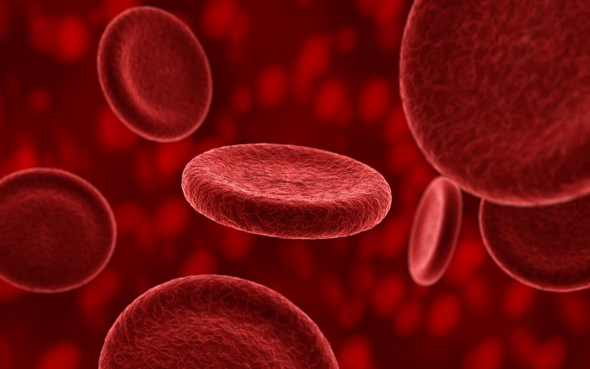 87065 download wallpaper Blood, Macro, Structure, Composition, Plasma, Erythrocytes screensavers and pictures for free