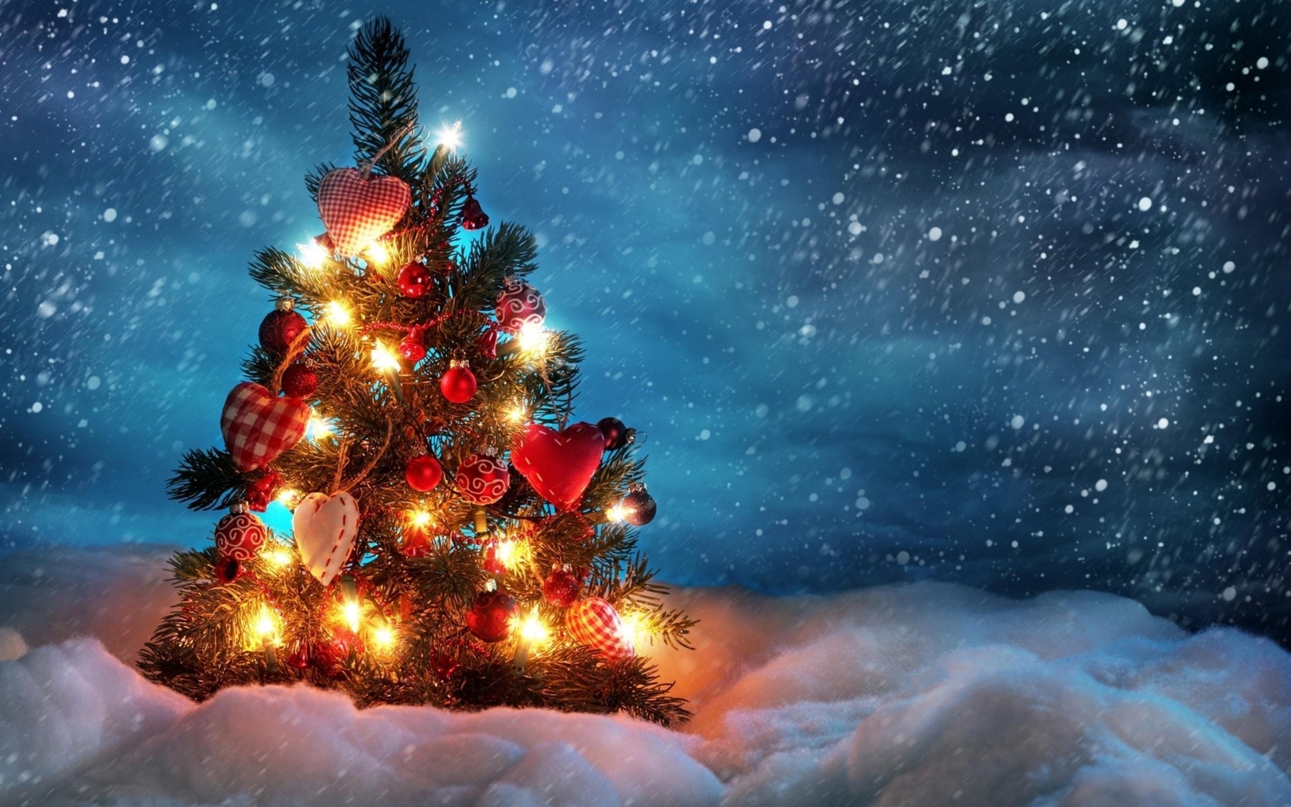 44805 скачать обои Праздники, Растения, Деревья, Новый Год (New Year) - заставки и картинки бесплатно