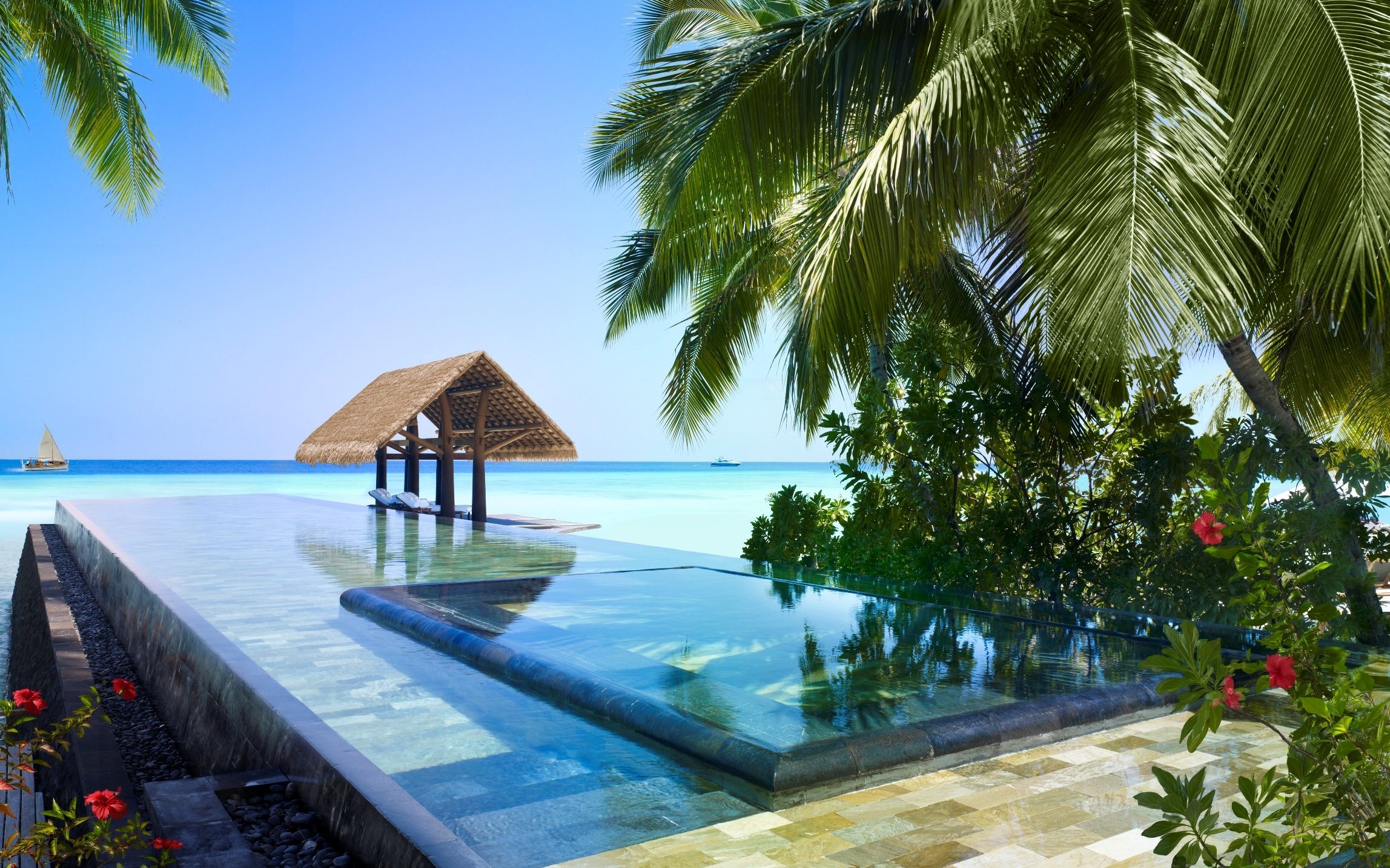 60443 download wallpaper Nature, Sea, Palms, Tropics screensavers and pictures for free