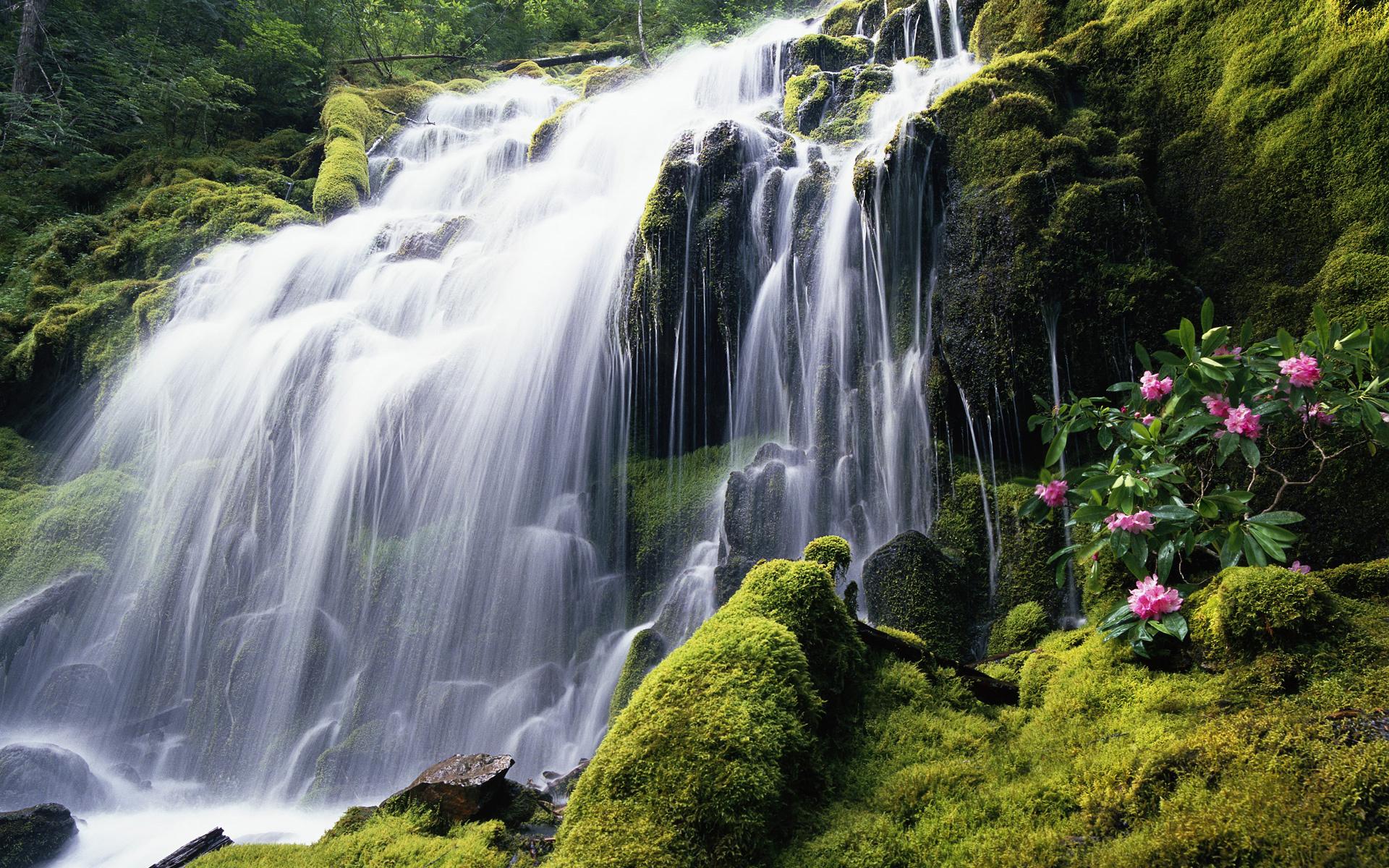 40990 скачать обои Пейзаж, Водопады - заставки и картинки бесплатно