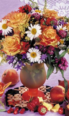 1905 descargar fondo de pantalla Plantas, Flores: protectores de pantalla e imágenes gratis