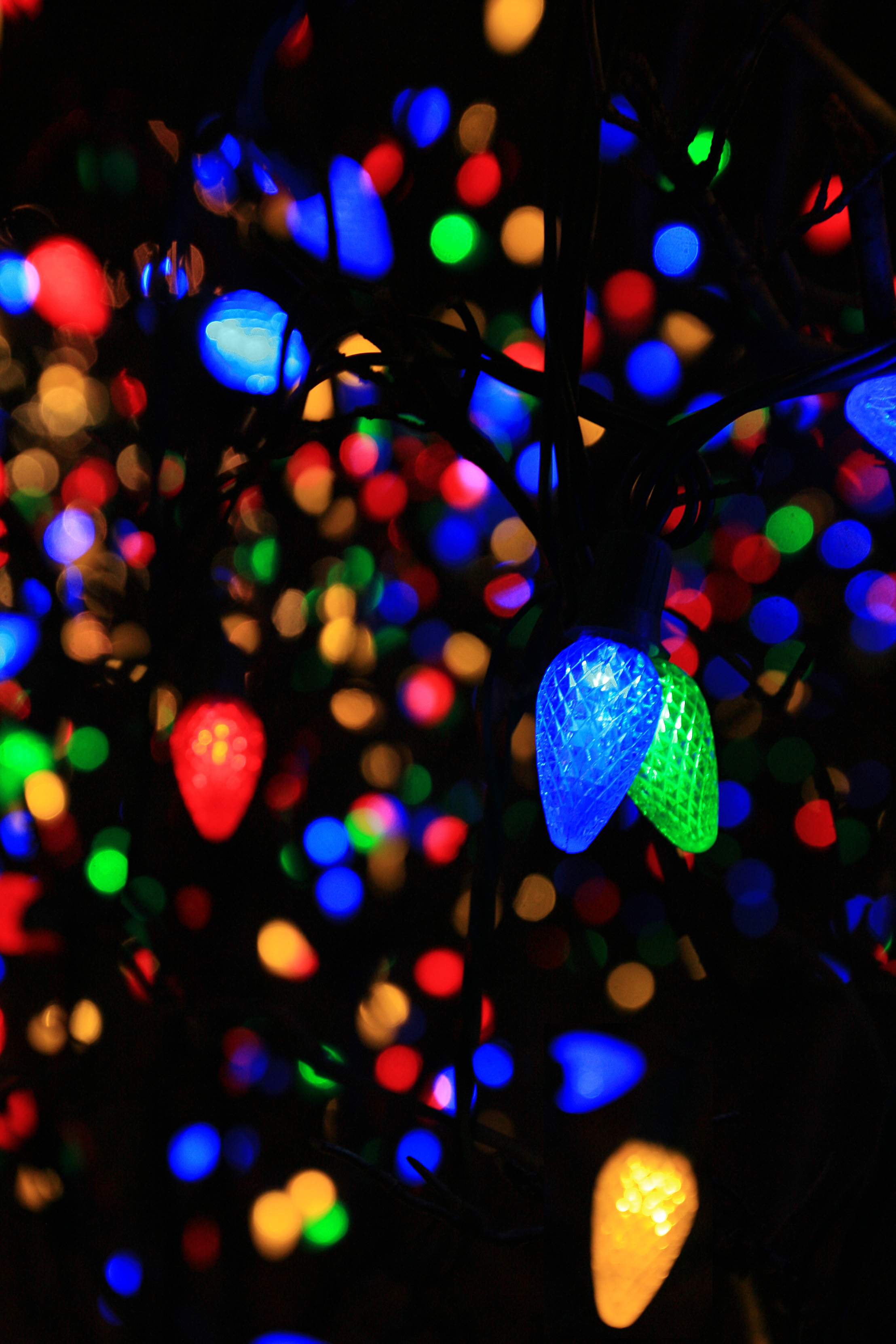 121989 download wallpaper Dark, Garland, Light Bulbs, Multicolored, Motley, Glow screensavers and pictures for free