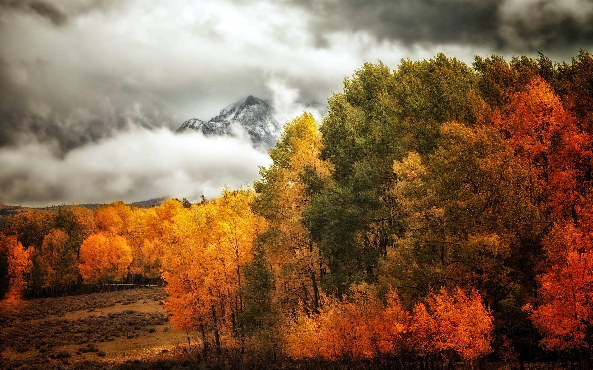 18162 скачать обои Пейзаж, Деревья, Горы, Осень, Облака - заставки и картинки бесплатно