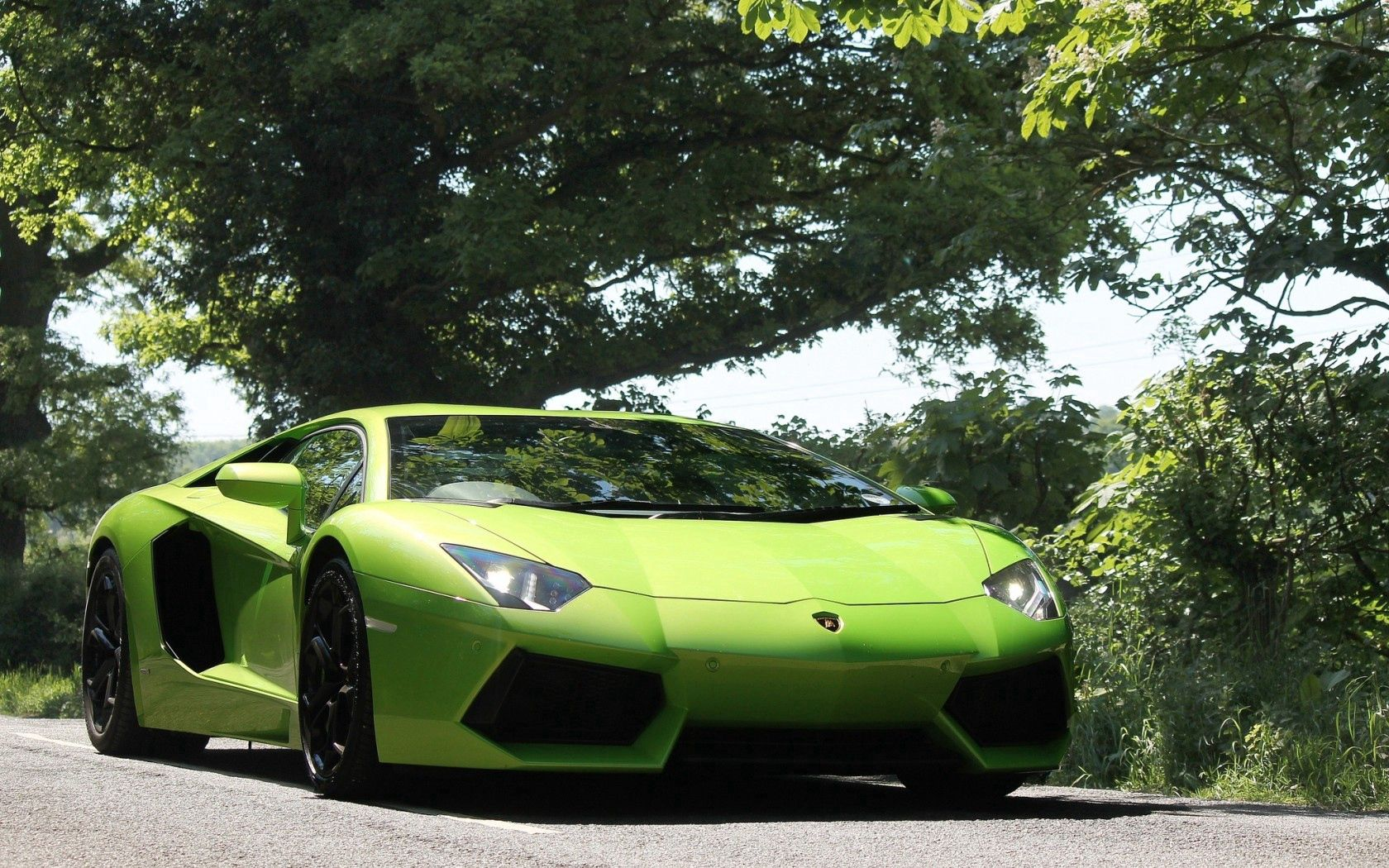 148902 Заставки и Обои Ламборджини (Lamborghini) на телефон. Скачать Ламборджини (Lamborghini), Деревья, Небо, Тачки (Cars), Вид Спереди, Зеленый, Aventador, Ламборгини, Свет Фар картинки бесплатно