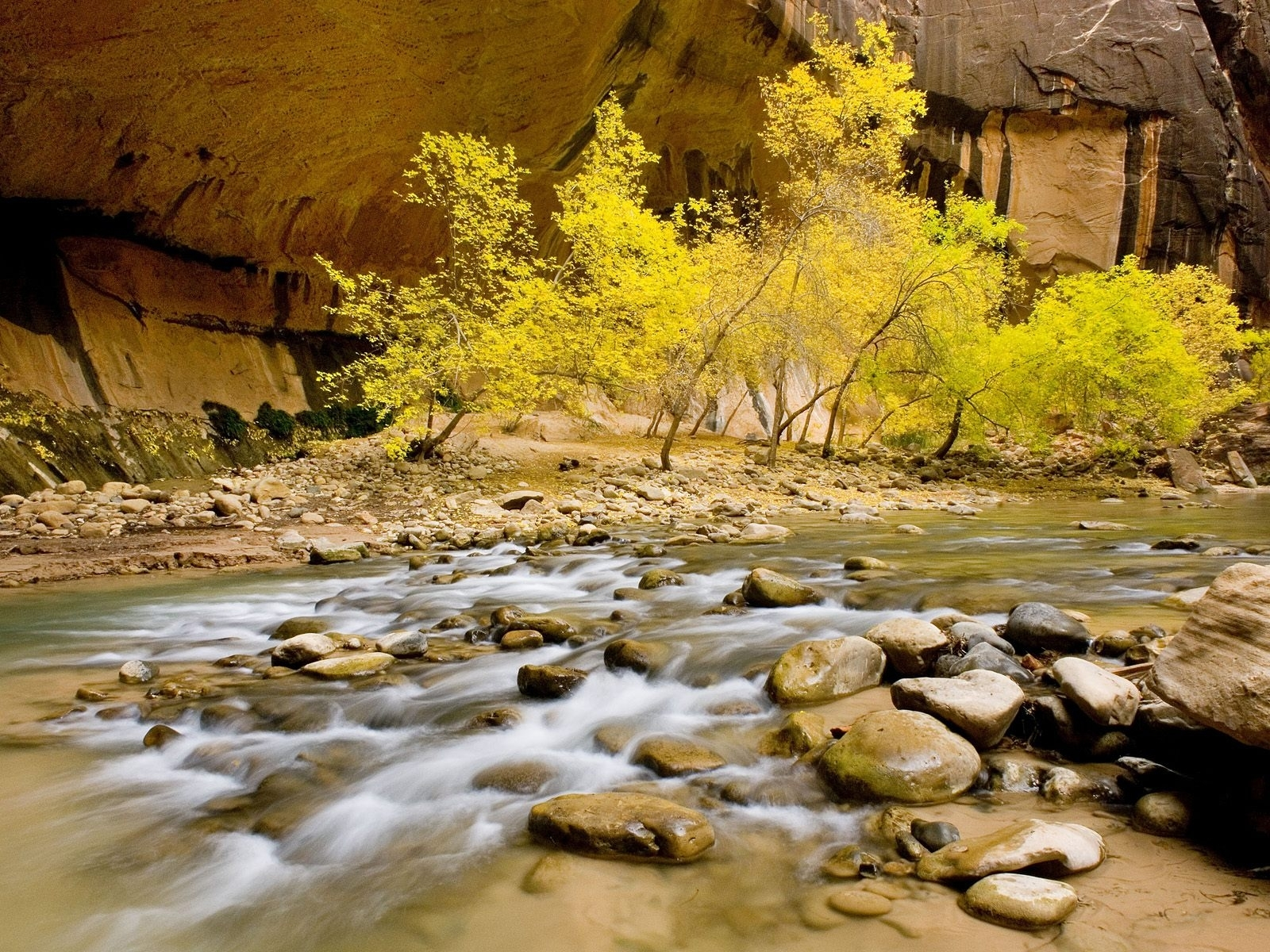 555 download wallpaper Landscape, Rivers, Trees, Stones screensavers and pictures for free