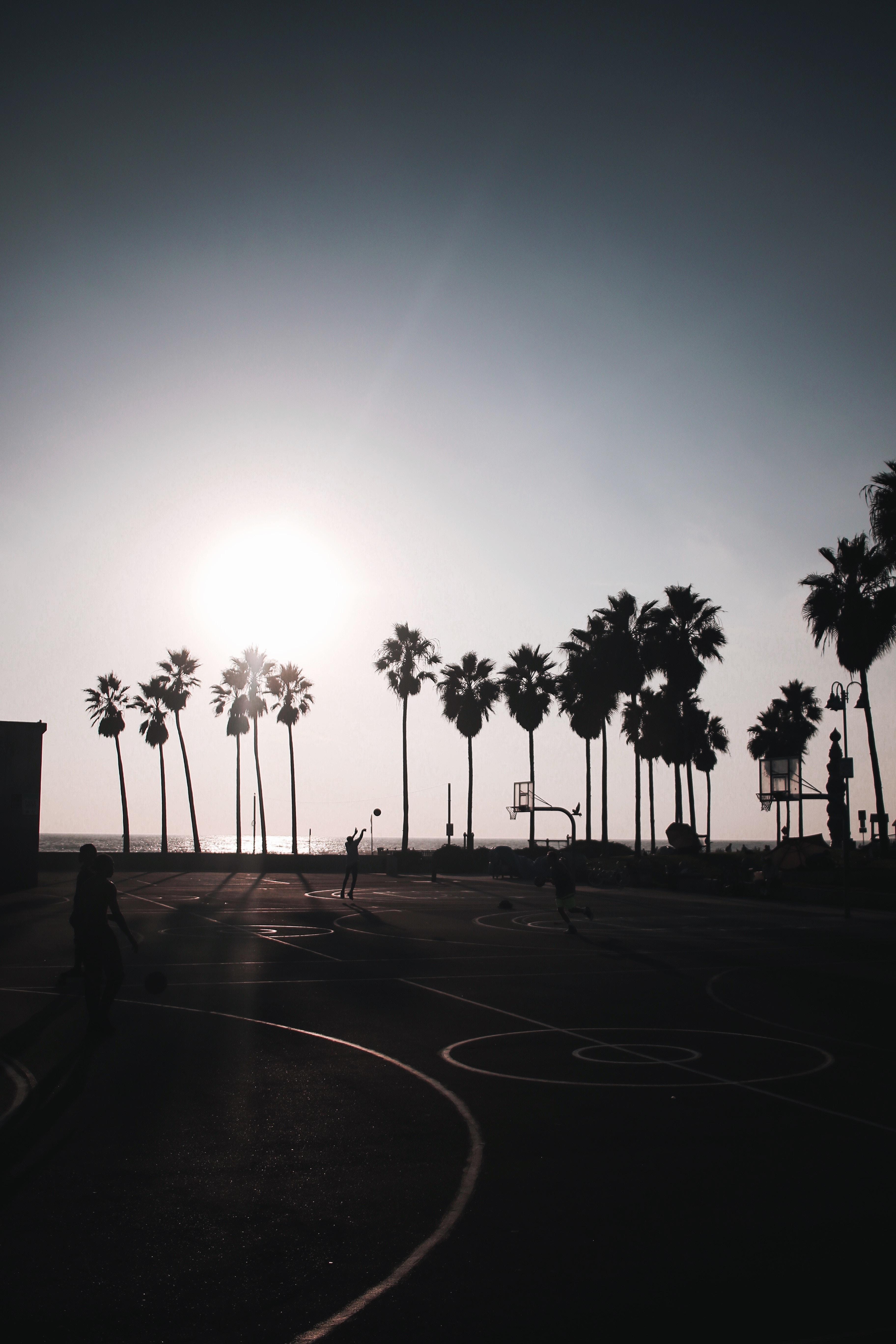 139756 Заставки и Обои Спорт на телефон. Скачать Баскетбол, Спорт, Солнце, Пальмы, Площадка, Силуэты, Темный картинки бесплатно