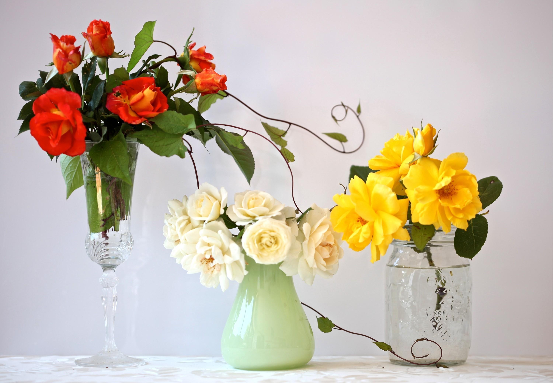 53942 télécharger le fond d'écran Fleurs, Trois, Différent, Vase, Vases, Fougère, Grand Verre De Vin, Roses, Bouquets - économiseurs d'écran et images gratuitement