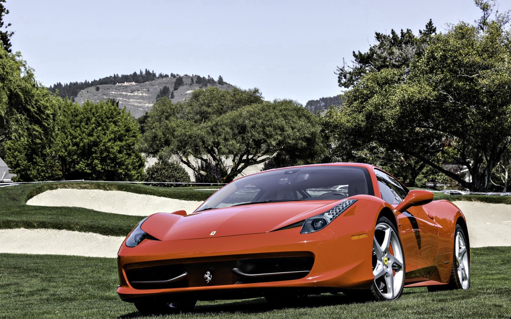 53425 download wallpaper Trees, Sky, Ferrari, Italy, Cars, Field screensavers and pictures for free