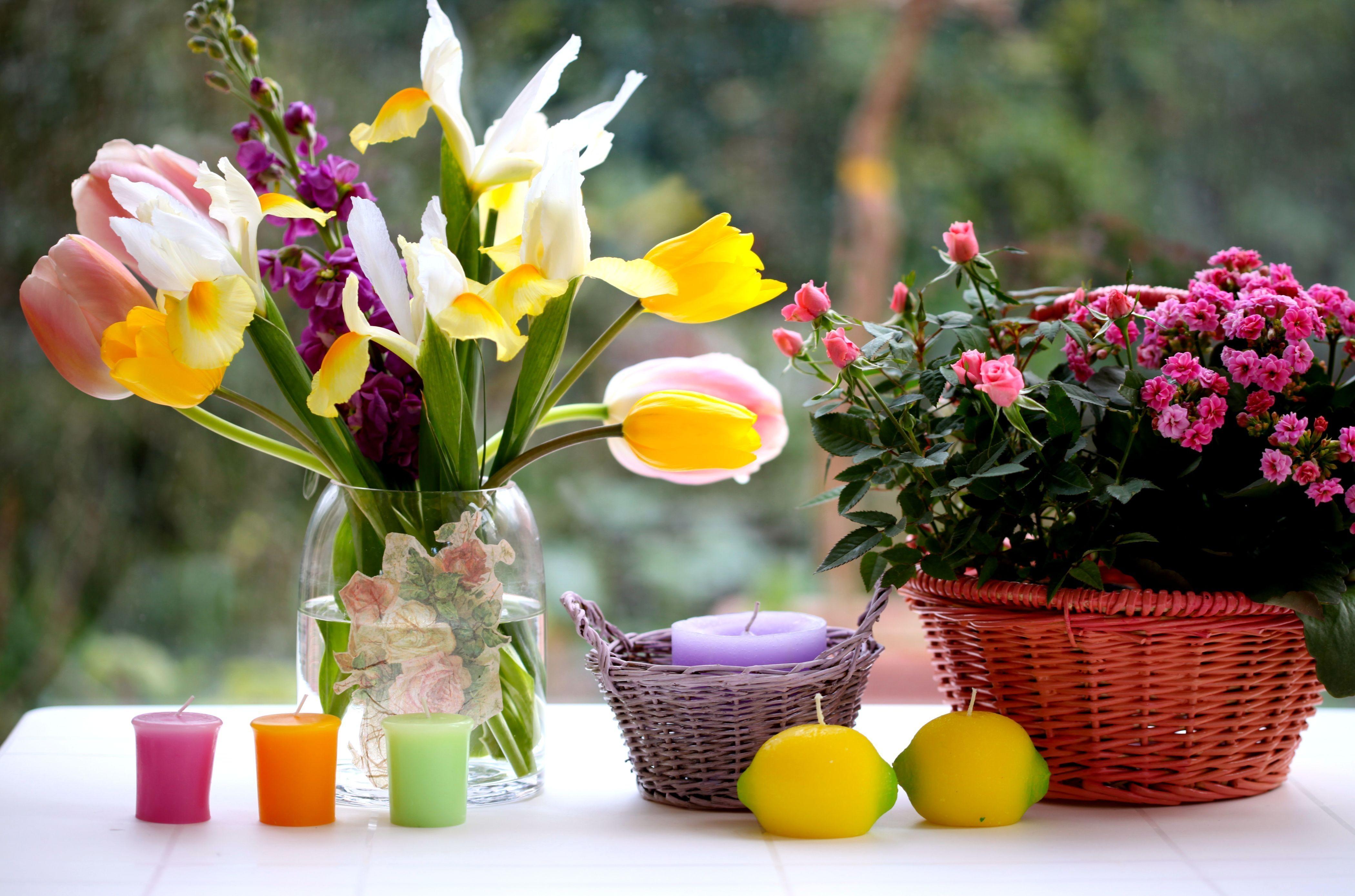 116738 télécharger le fond d'écran Fleurs, Iris, Vase, Panier, Bougies, Tulipes, Roses, Bouquets - économiseurs d'écran et images gratuitement