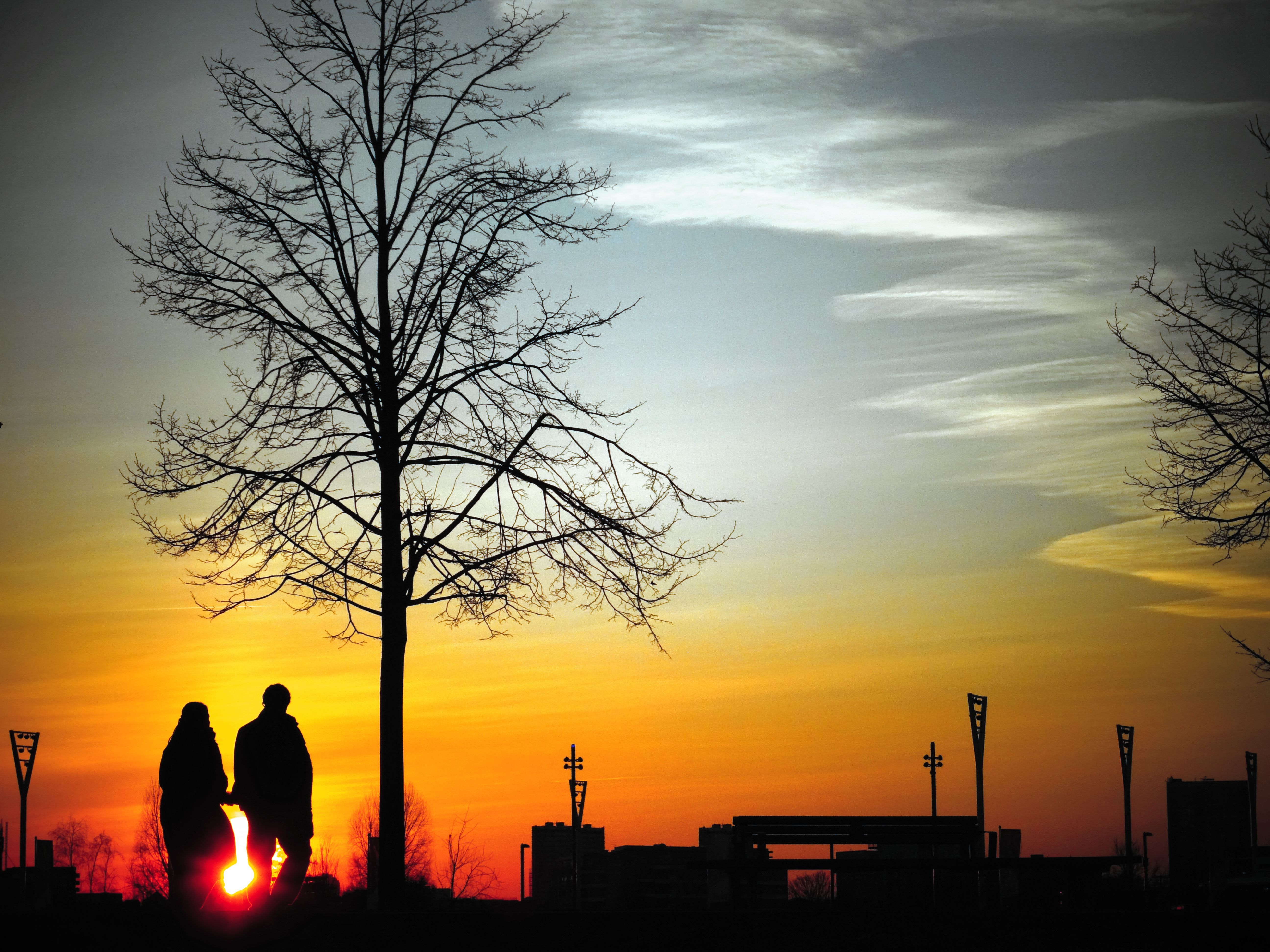 127634 download wallpaper Love, Couple, Pair, Silhouettes, Sunset, Stroll, Wood, Tree screensavers and pictures for free