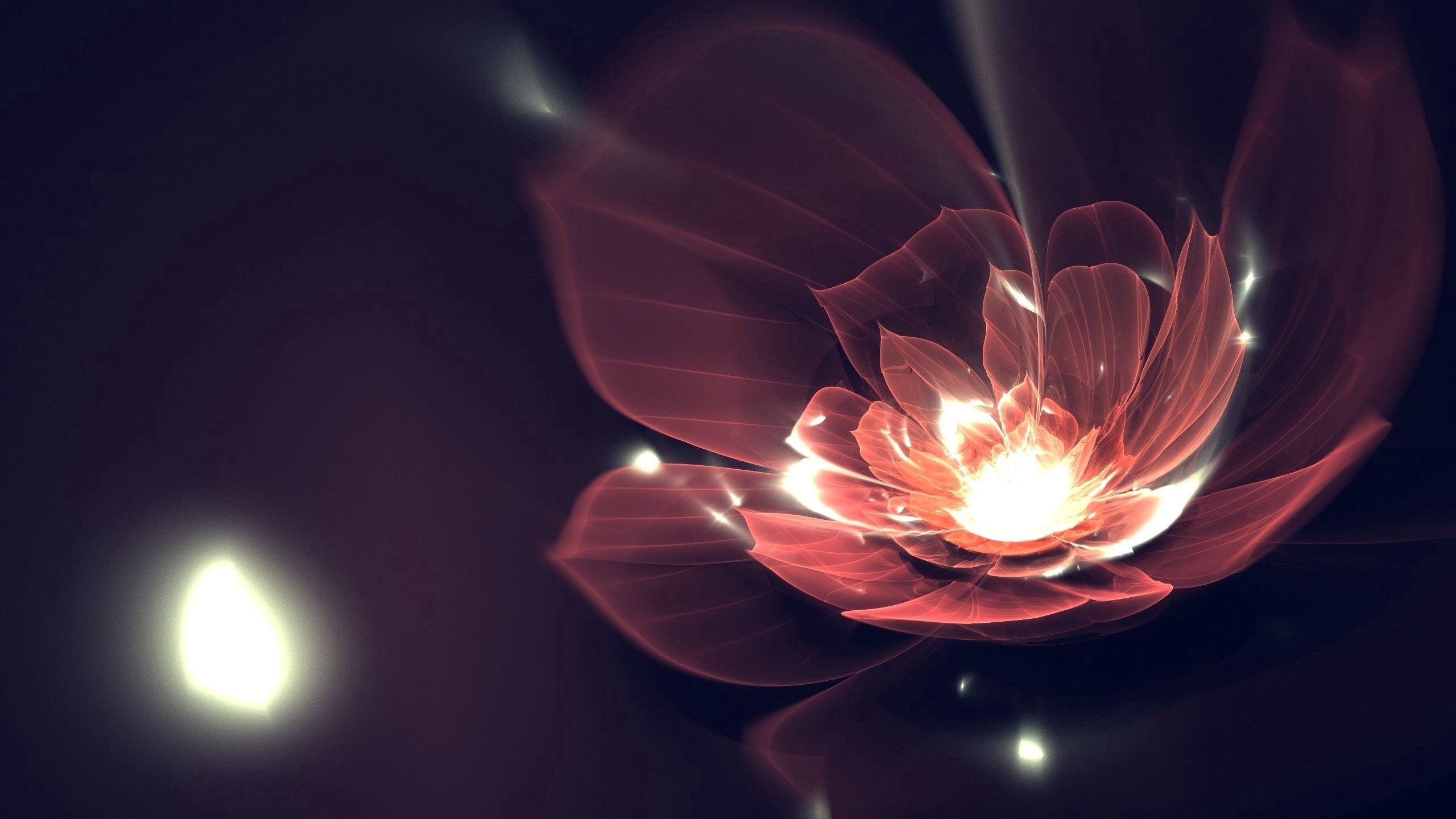 69831 Hintergrundbild herunterladen Abstrakt, Hintergrund, Blume, Dunkel, Scheinen, Linien, Brillanz - Bildschirmschoner und Bilder kostenlos