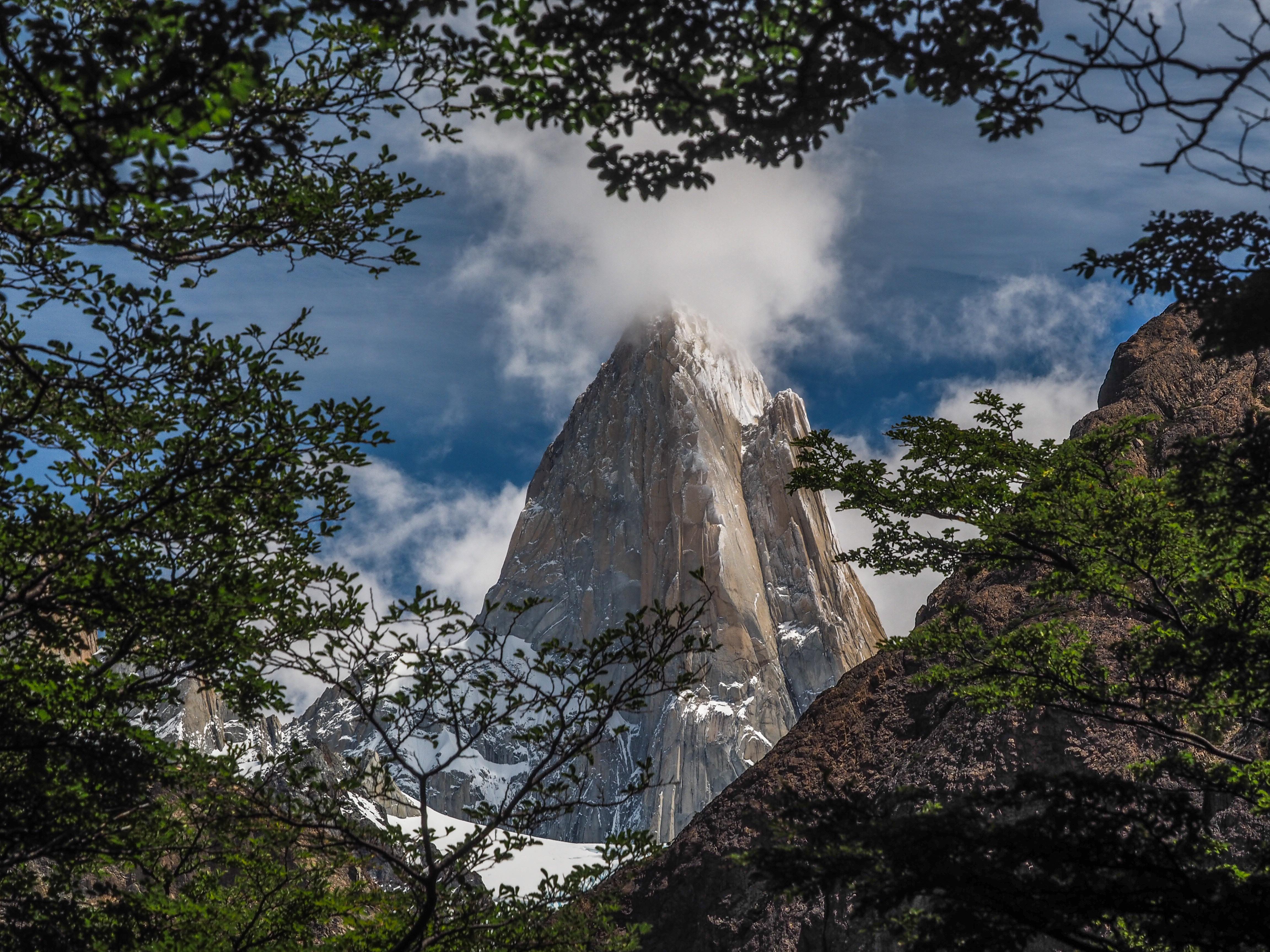 56799 免費下載壁紙 性质, 岩石, 悬崖, 陡, 陡峭, 高, 云, 云端, 分行, 分支, 树 屏保和圖片