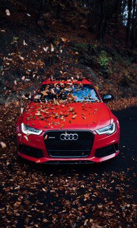 71441 télécharger le fond d'écran Voitures, Audi, Voiture, Vue De Face, Pare-Chocs, Feuillage, Automne - économiseurs d'écran et images gratuitement