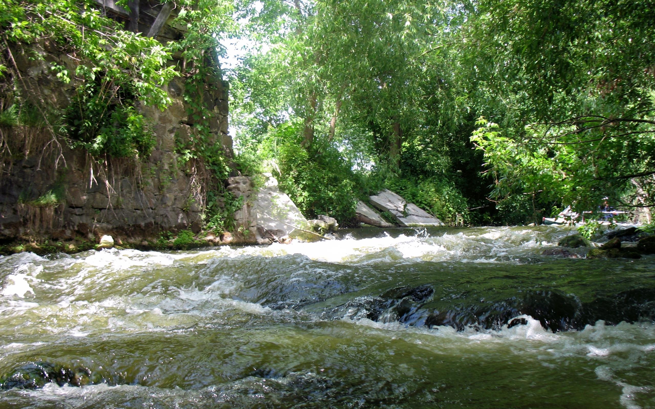 27898 скачать обои Пейзаж, Река, Деревья - заставки и картинки бесплатно