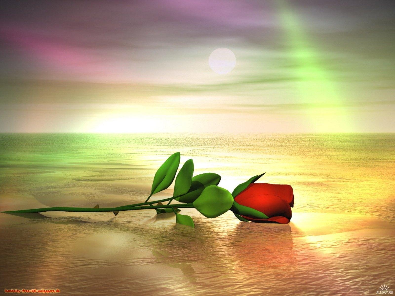 7728 скачать обои Растения, Цветы, Арт, Розы, Море - заставки и картинки бесплатно