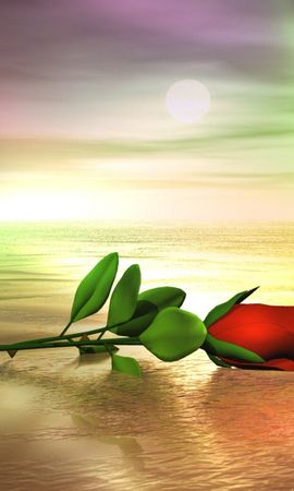 7728 download wallpaper Plants, Flowers, Art, Roses, Sea screensavers and pictures for free