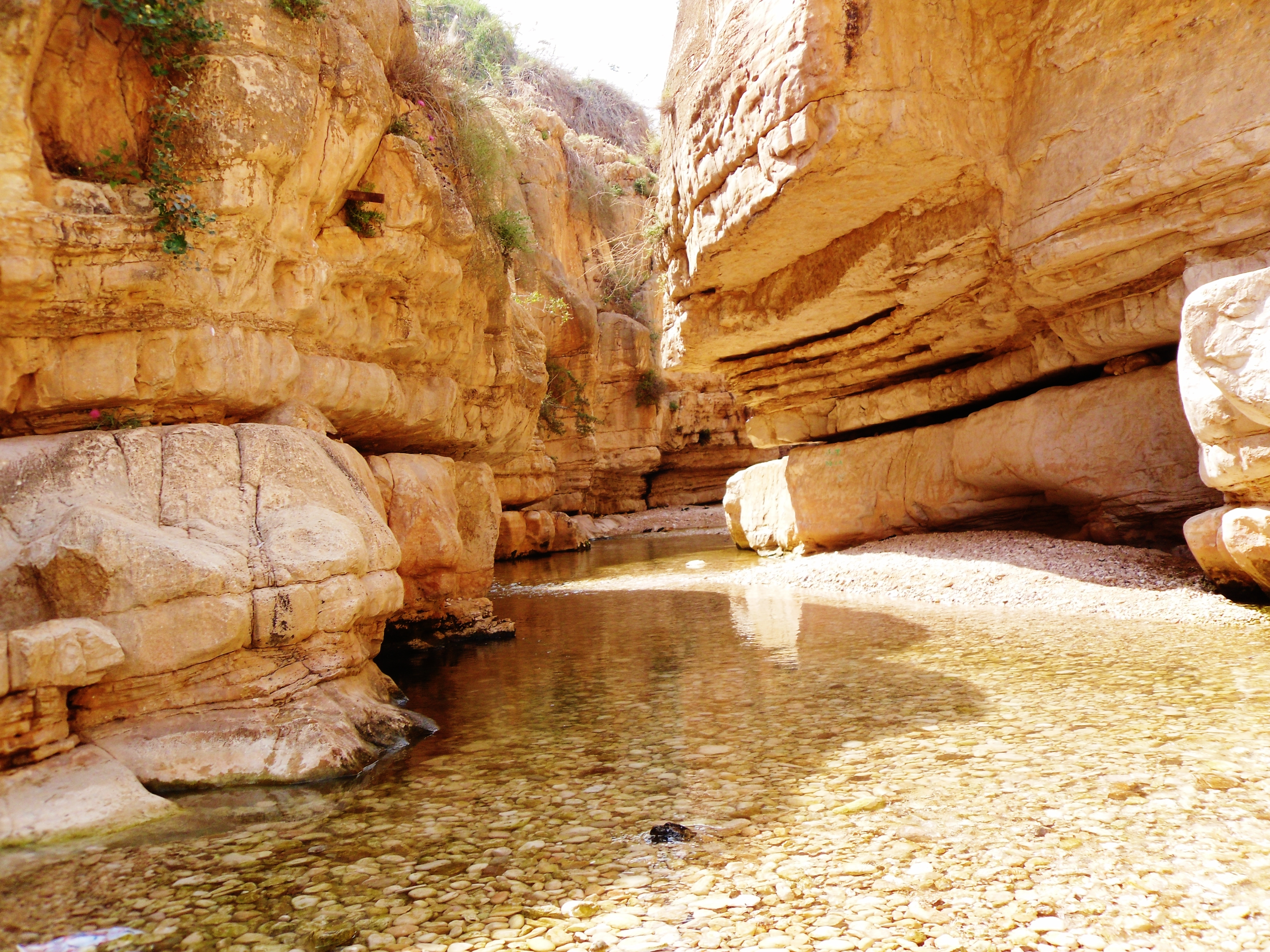 Popular Gorge images for mobile phone