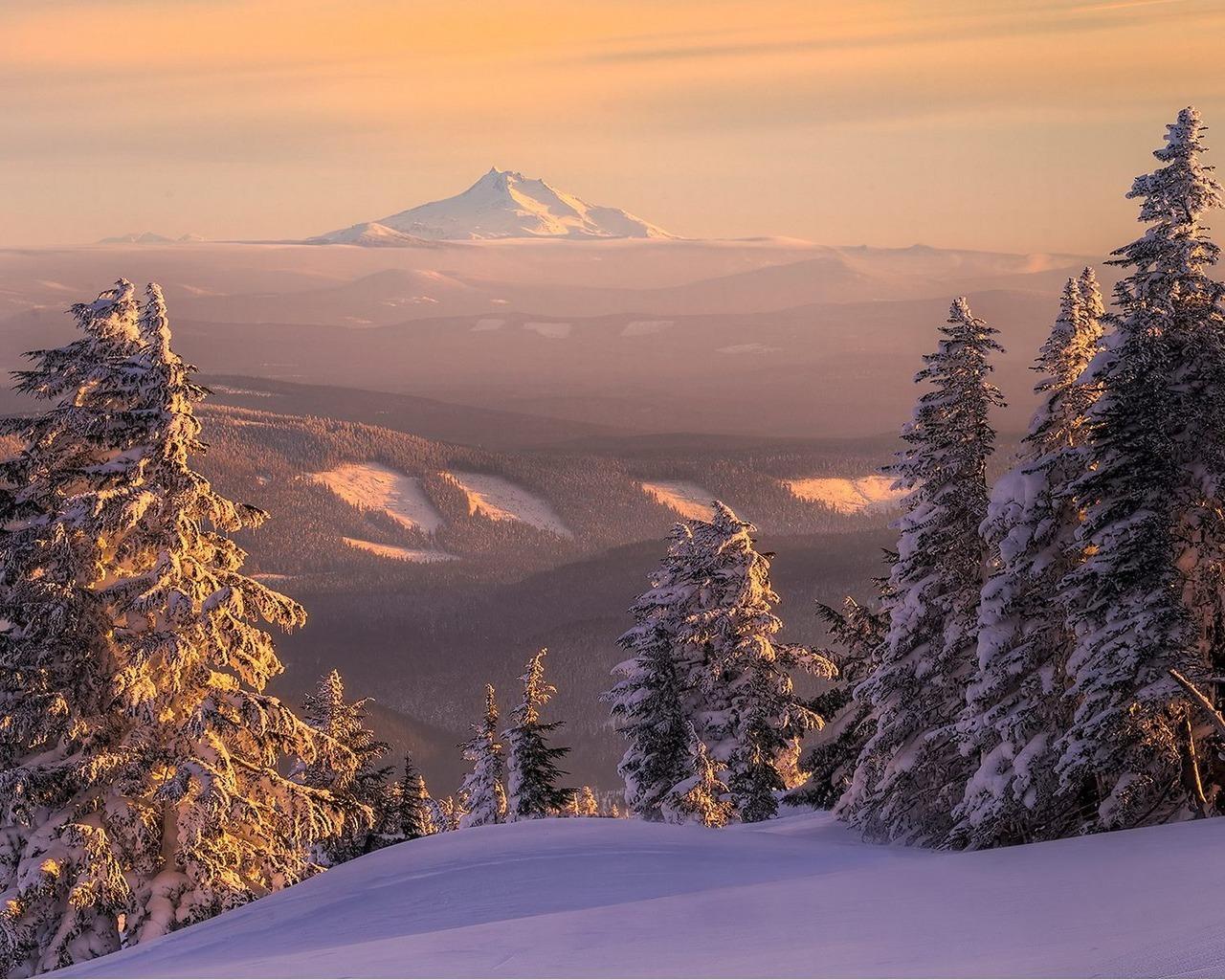 8599 скачать обои Пейзаж, Зима, Деревья, Елки - заставки и картинки бесплатно