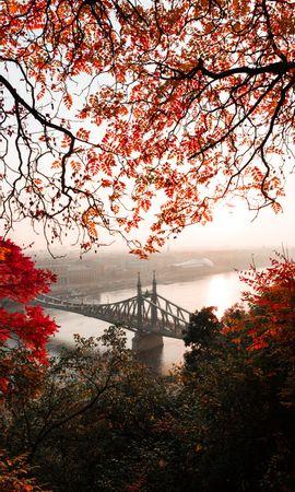 134435 скачать обои Мост, Осень, Город, Цитадель, Будапешт, Венгрия, Города - заставки и картинки бесплатно