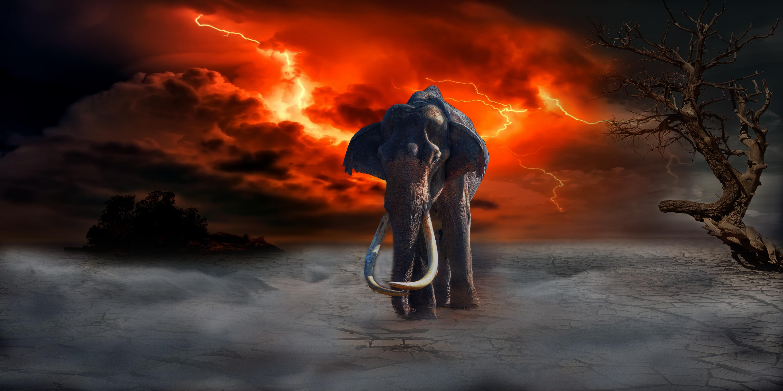 83084 скачать обои Арт, Слон, Молнии, Фотошоп, Фантазия - заставки и картинки бесплатно