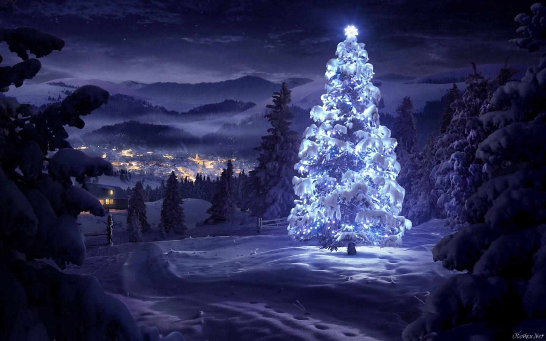 20128 скачать обои Рождество (Christmas, Xmas), Новый Год (New Year), Праздники, Зима, Снег, Елки, Рисунки - заставки и картинки бесплатно