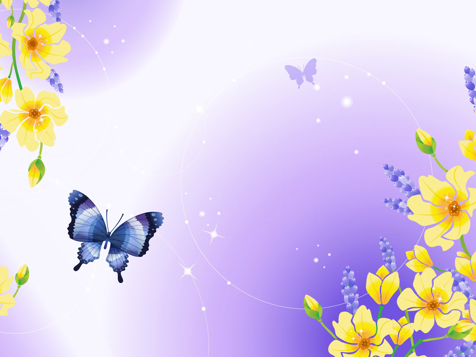 12772 download wallpaper Butterflies, Insects, Pictures screensavers and pictures for free
