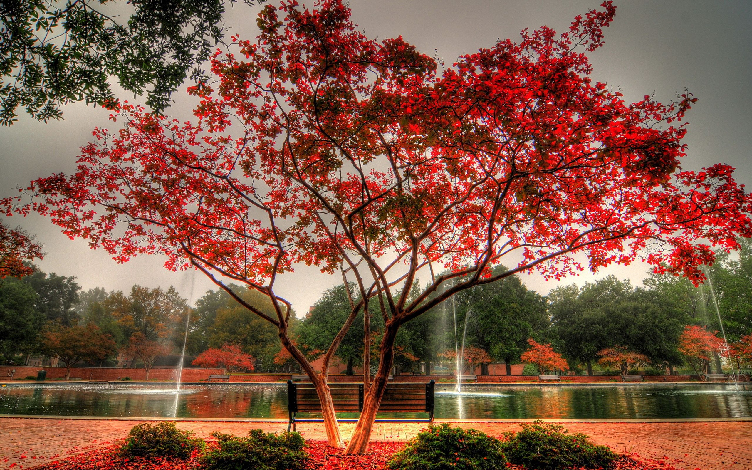 150621 Screensavers and Wallpapers Bench for phone. Download Autumn, Nature, Fountain, Wood, Park, Tree, Bench, Jet, Jets pictures for free