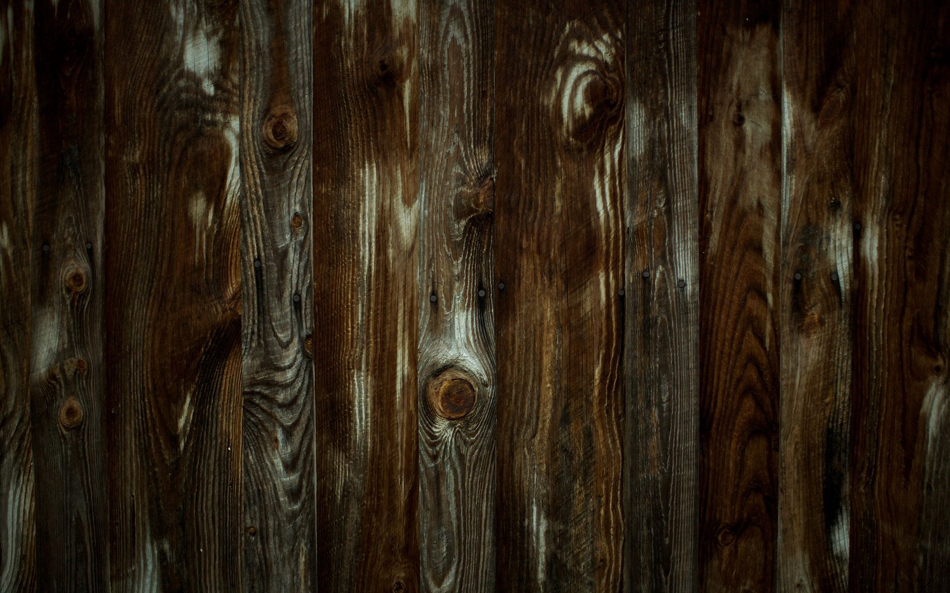 123973 download wallpaper Textures, Texture, Wood, Tree, Planks, Board, Wall, Wooden screensavers and pictures for free