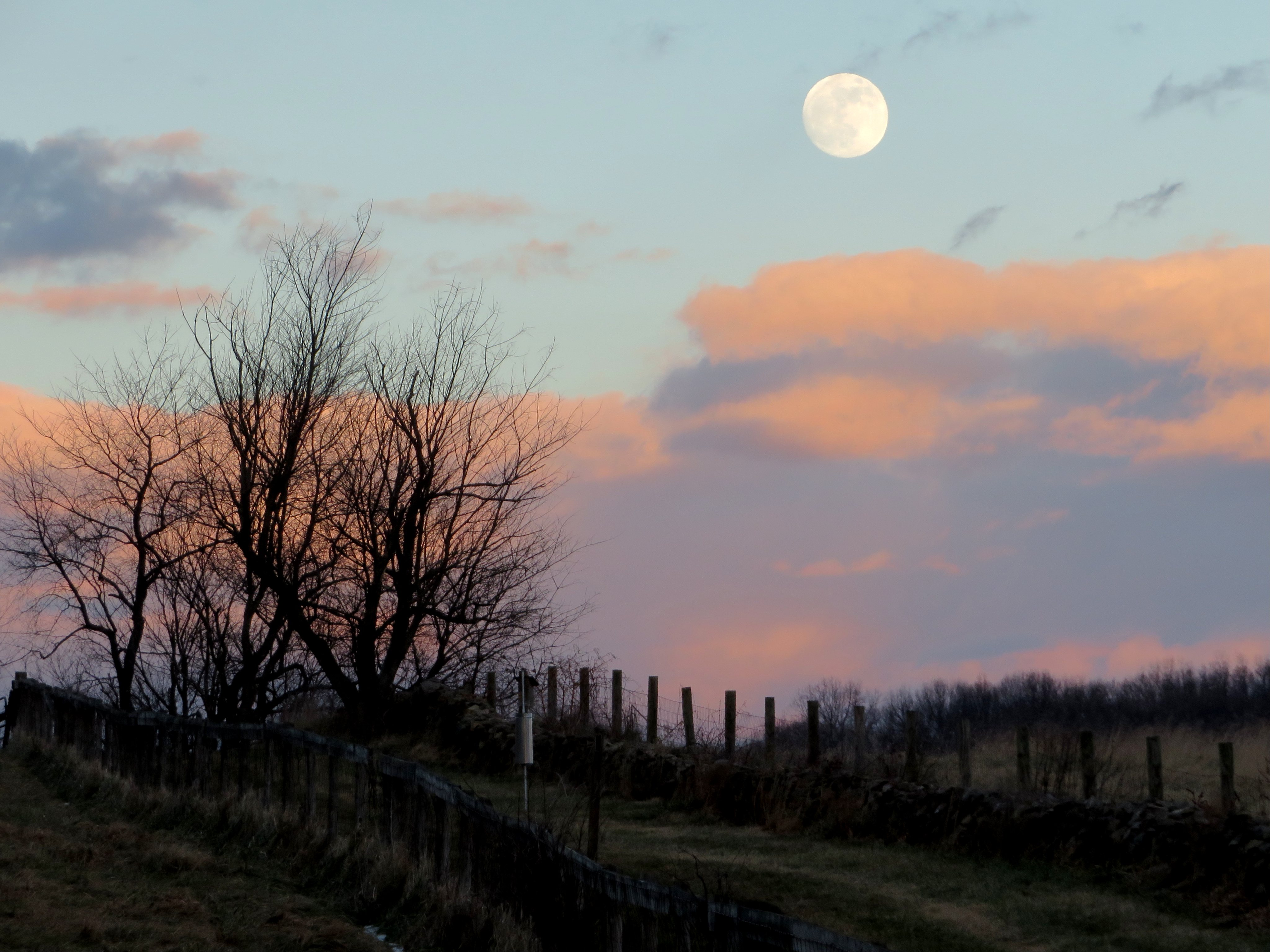 77916 free wallpaper 1080x2400 for phone, download images Nature, Twilight, Clouds, Moon, Dusk, Fence 1080x2400 for mobile