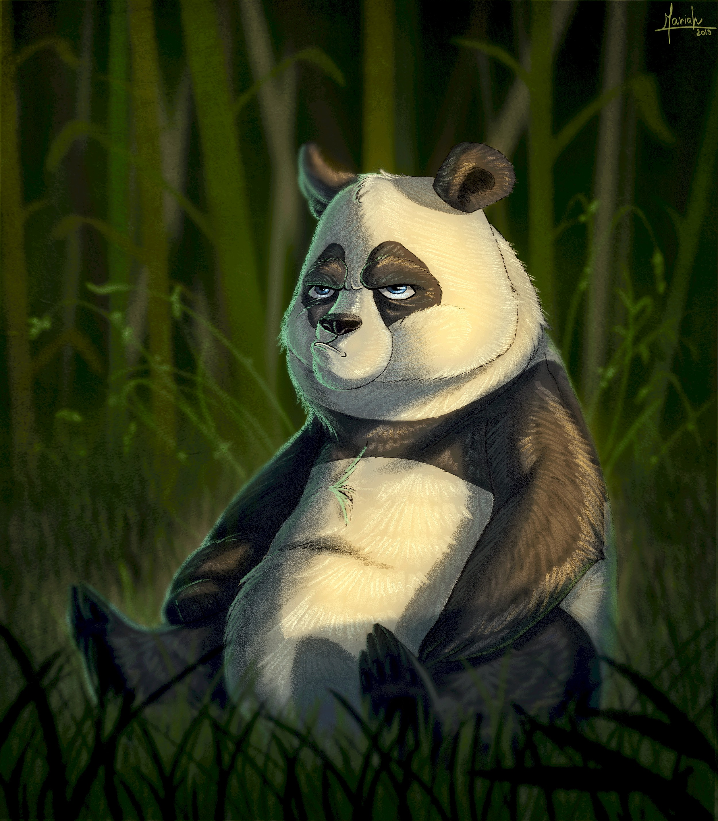 109883 download wallpaper Art, Bear, Panda, Emotions, Dissatisfaction, Discontent screensavers and pictures for free