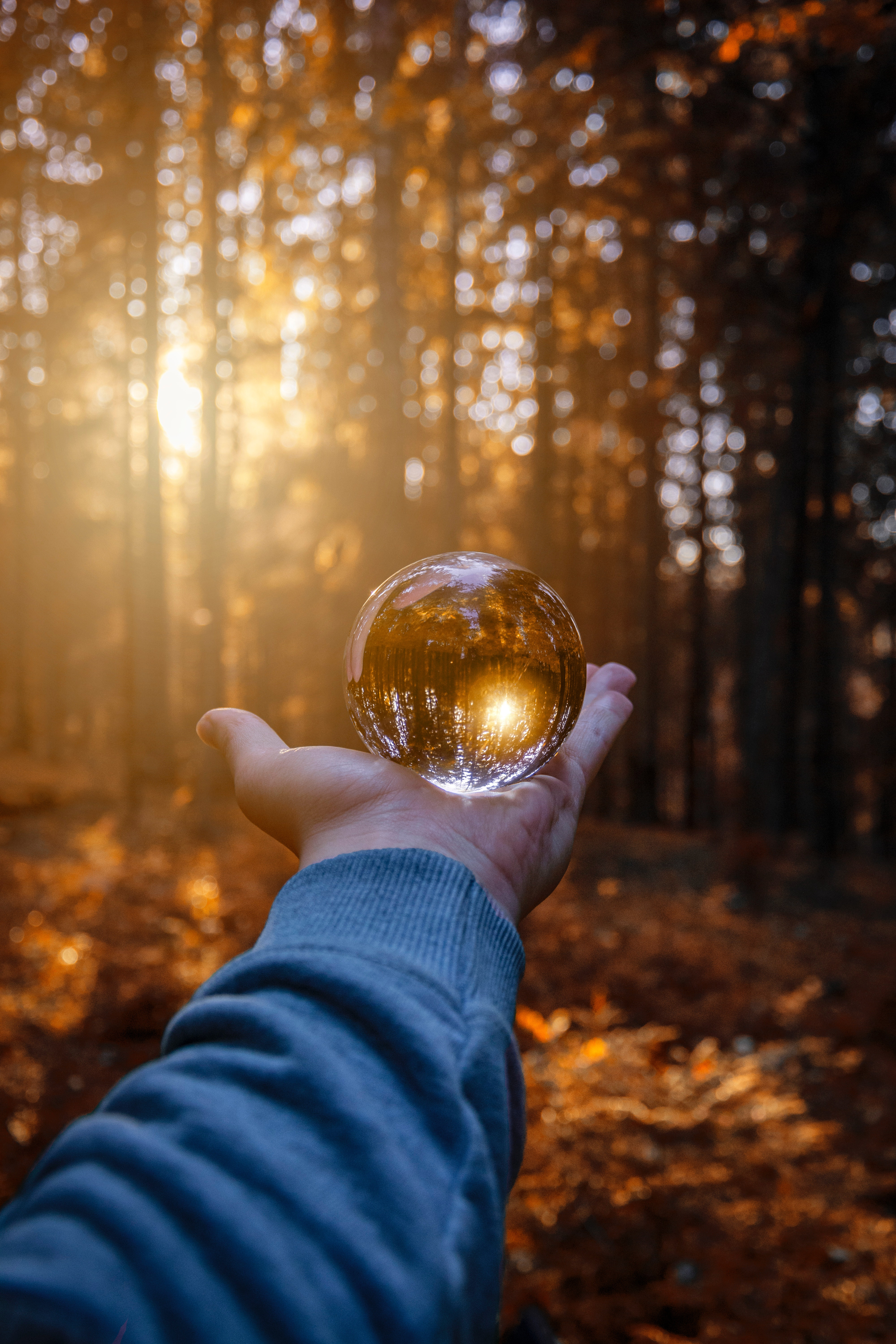 80906 download wallpaper Autumn, Reflection, Hand, Miscellanea, Miscellaneous, Glass, Ball screensavers and pictures for free
