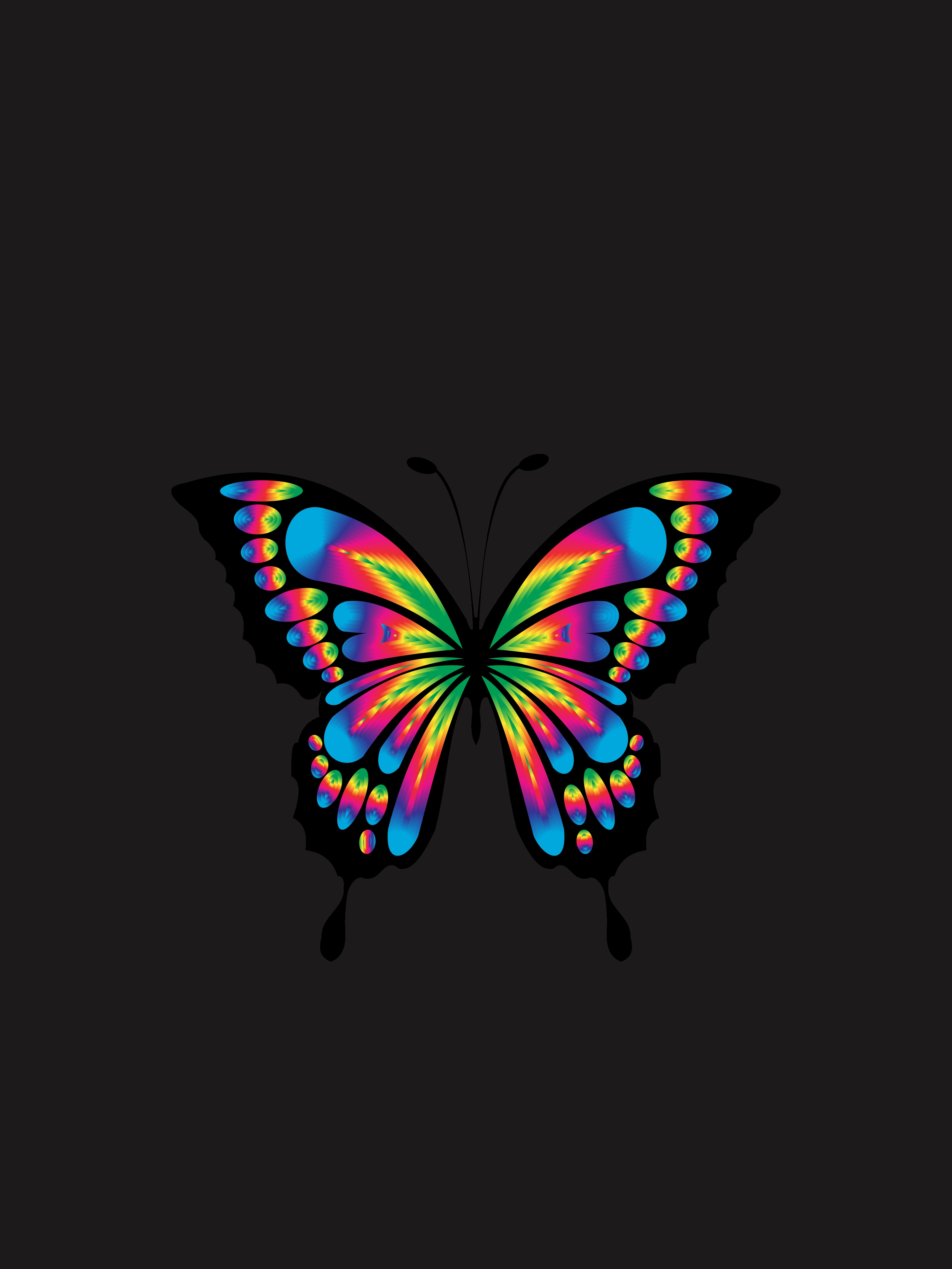149266 Screensavers and Wallpapers Butterfly for phone. Download Shine, Bright, Multicolored, Motley, Minimalism, Brilliance, Butterfly, Prismatic, Chromatic pictures for free