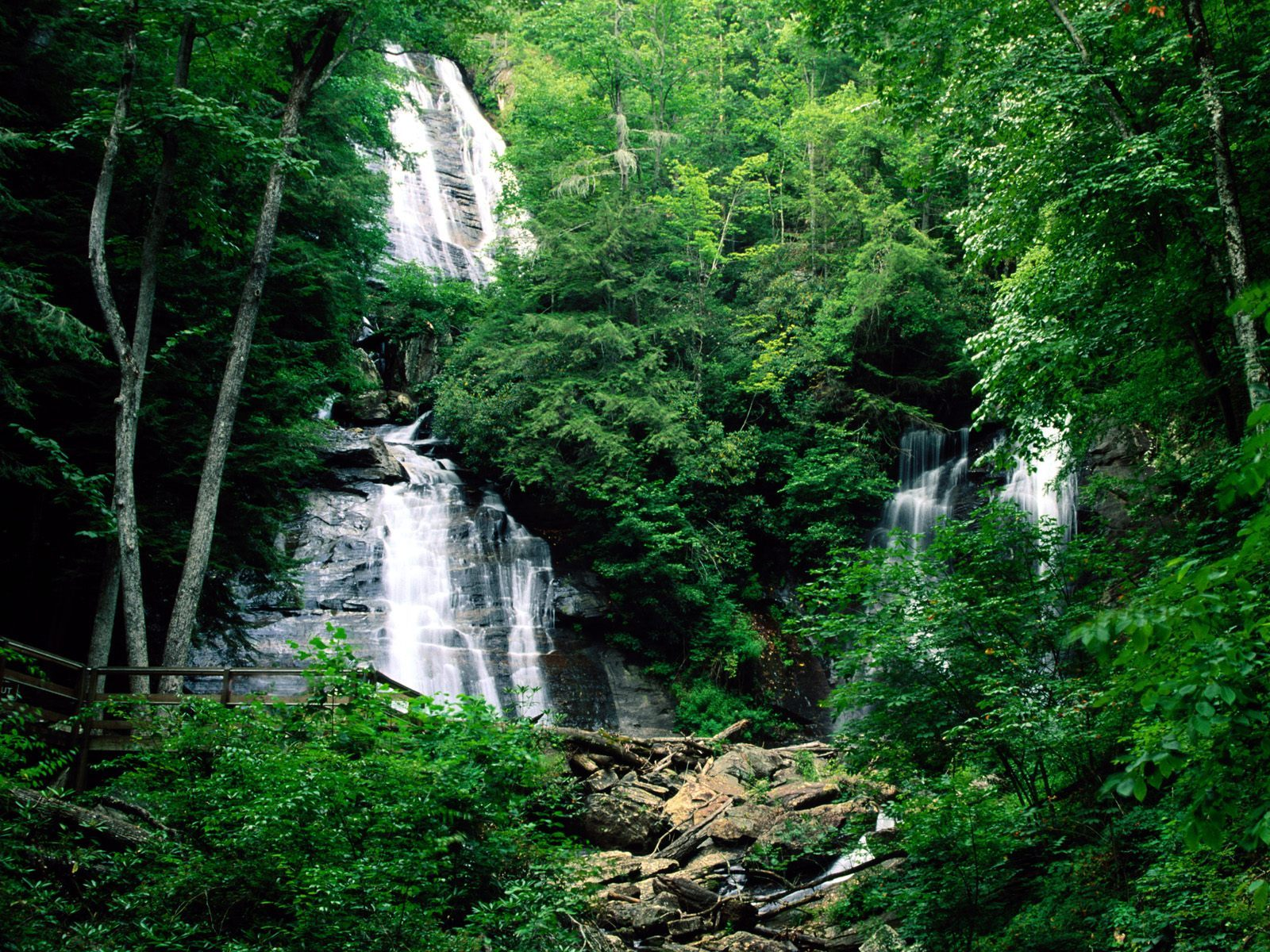 14662 download wallpaper Plants, Landscape, Waterfalls screensavers and pictures for free