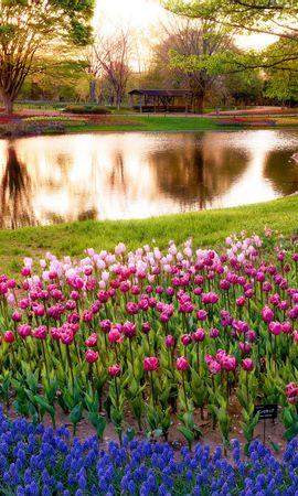 21929 скачать обои Пейзаж, Цветы, Река, Деревья - заставки и картинки бесплатно