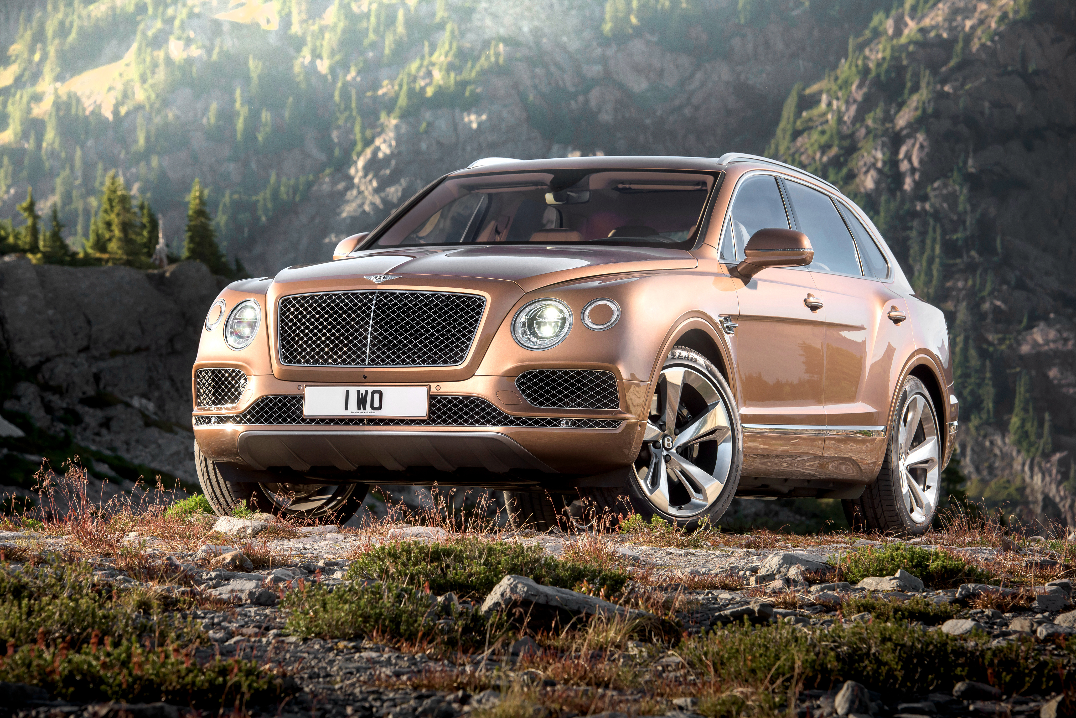 70963 download wallpaper Bentley, Cars, Brown, Side View, Bentayga screensavers and pictures for free