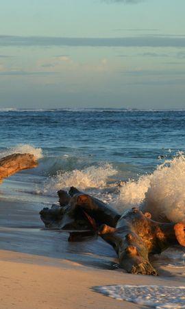 42047 descargar fondo de pantalla Paisaje, Mar: protectores de pantalla e imágenes gratis